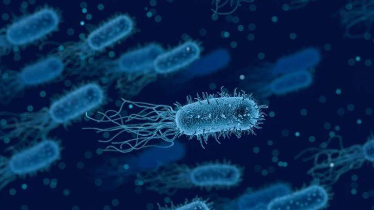 La Inteligencia Artificial combate las bacterias